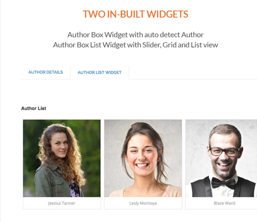 Ultimate Author Box Feature - Two Inbuilt Widgets